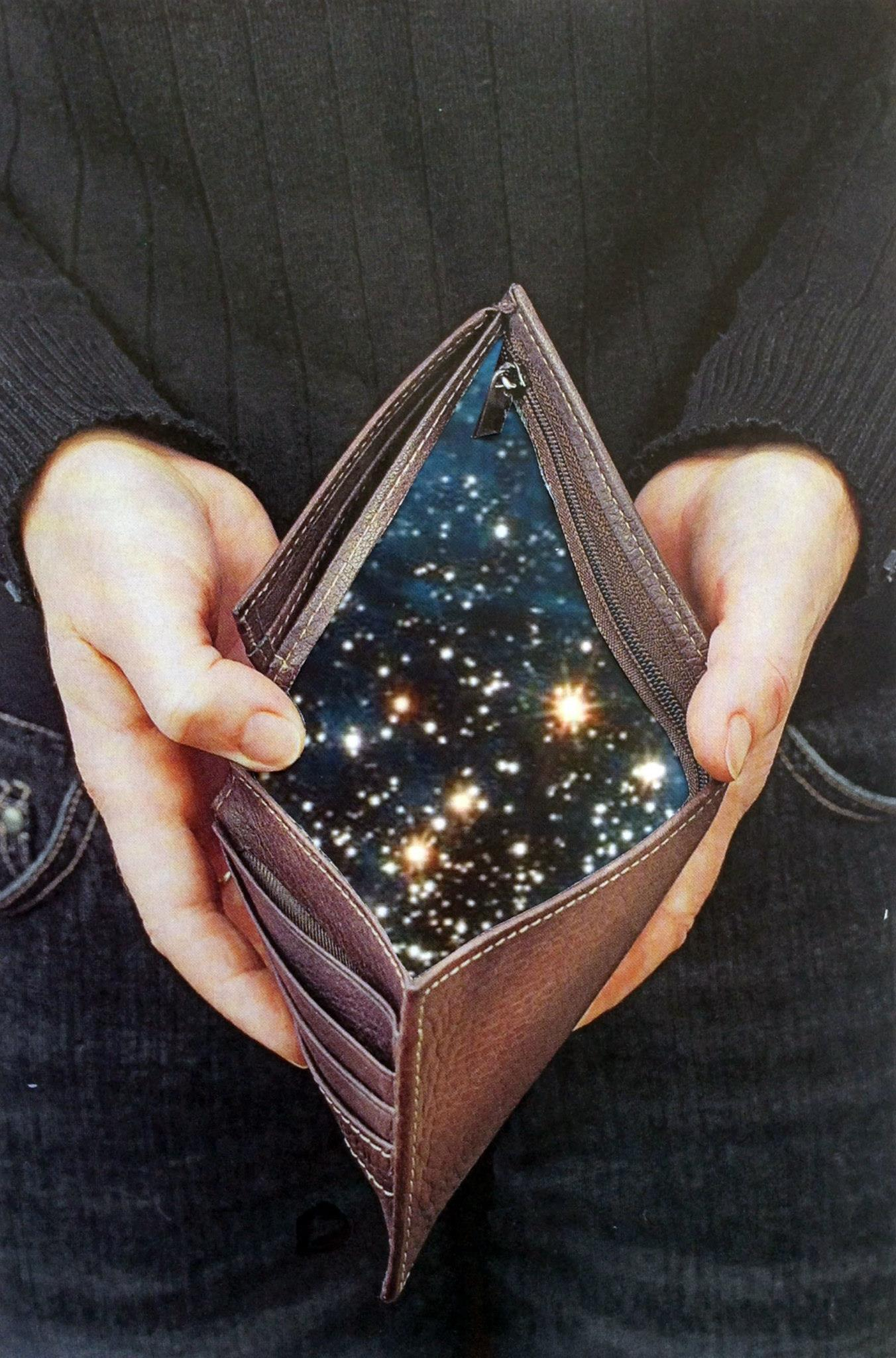 projekt wallet