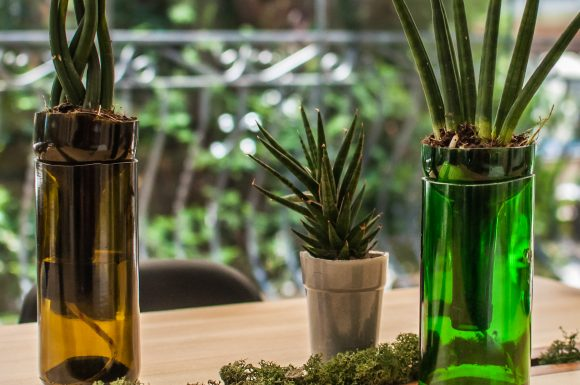 szklo butelki stol sukulenty wielkanoc