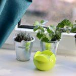 Jak zachować wiosenny zapach w domu przez cały rok?